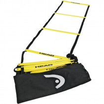 Head Trainings ladder