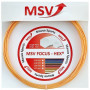 MSV Focus HEX gold