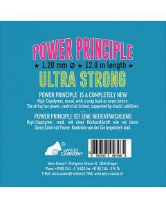 Power Principle 12m